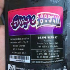 buy Jungle Boys Grape Head online