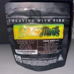 buy jungle boys lemon mints online