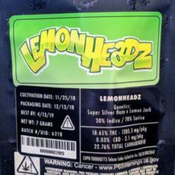 buy jungle boys lemon headz online