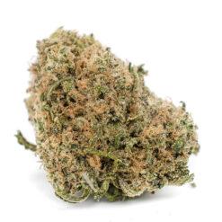 buy white runtz strain online